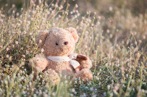 Is it possible to prevent the development of allergies in children?