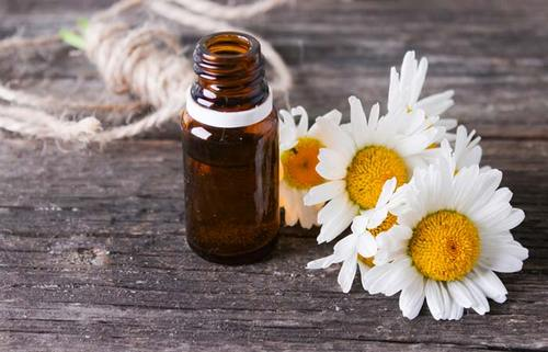 Struggling With Anxiety? Have You Tried These Essential Oils Yet?