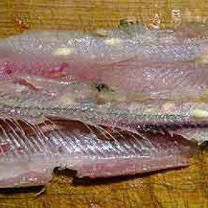 parazity-v-rybe