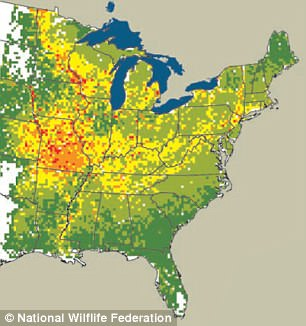 In 2010, 'high' pollen rates were confined to a few spots in the Midwest