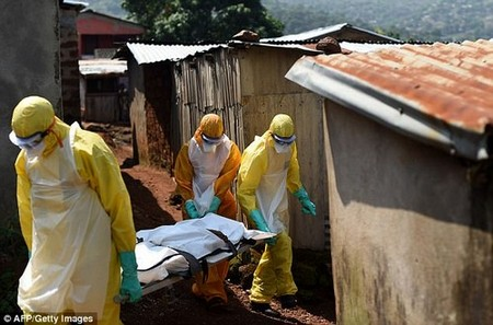 Health officials in the African country have already confirmed six cases of the deadly virus, considered one of the most lethal known to science (pictured, Red Cross workers carrying a corpse out of a house in Sierra Leone during the Ebola pandemic of 2014-16)