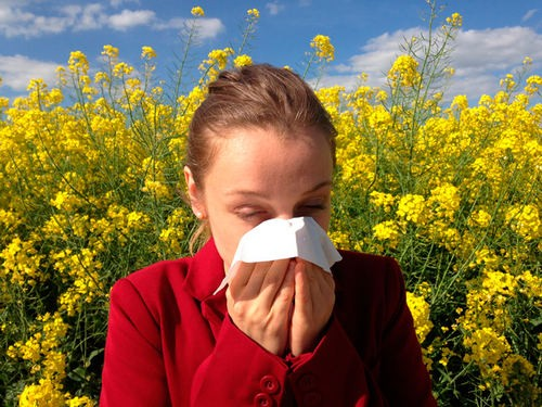 How to deal with seasonal allergies?