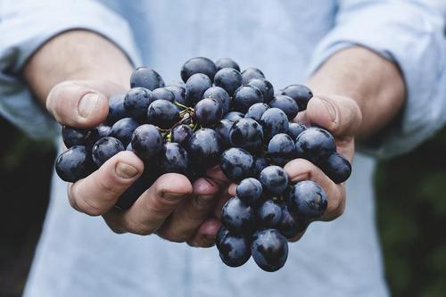 Grapes should be red