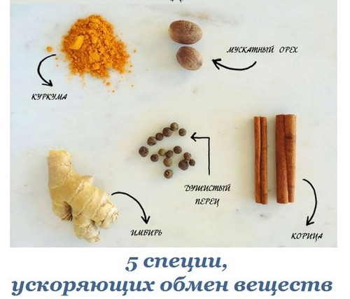 Metabolic Spices