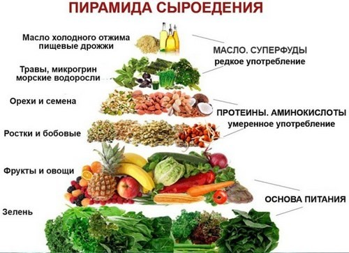 Raw food diet in winter, diet, diet